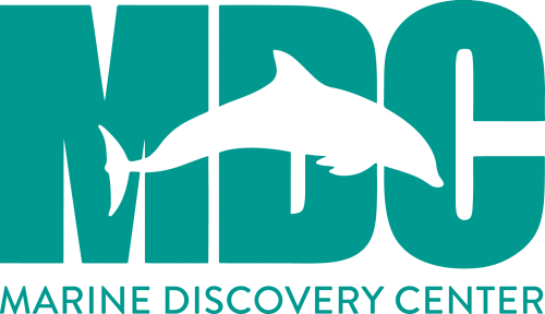 Marine Discovery Center