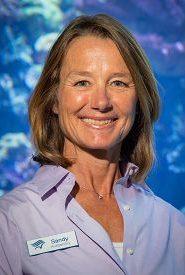 Dr. Sandy Trautwein