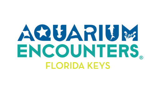 Aquarium Encounters Florida Keys